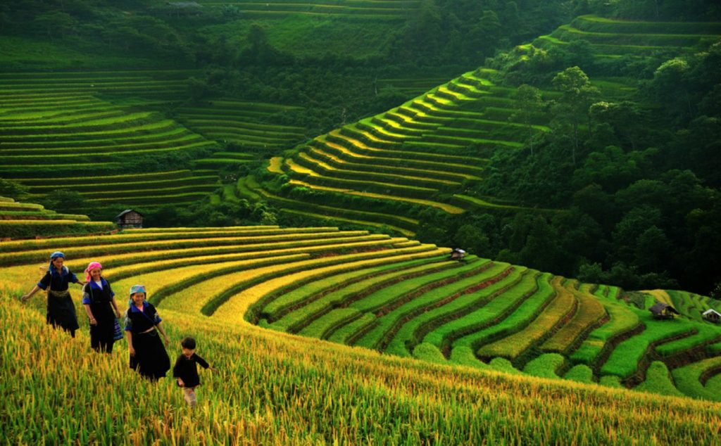 Lets-Peep-into-Vietnam-Travel-Guide